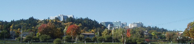 OHSU on Marquam Hil - John's Landing